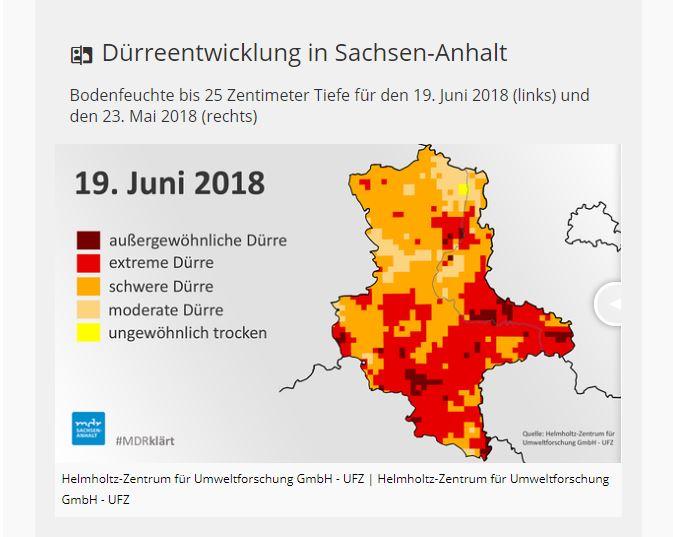 Anhaltende Trockenheit: Ernteausfälle und Brände schaden der Landwirtschaft