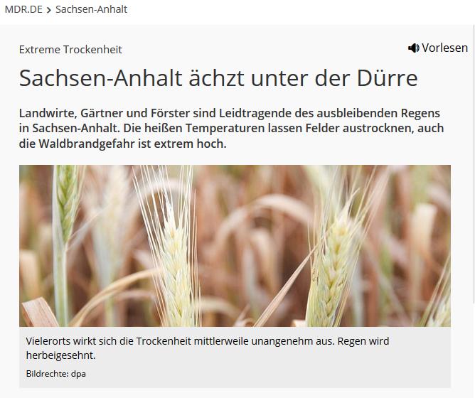 Landwirtschaft in Sachsen-Anhalt leidet unter Trockenheit